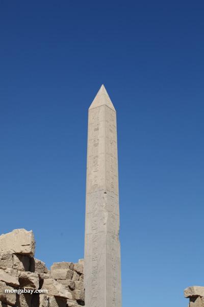 Karnak Temple at Luxor [egypt_0653]