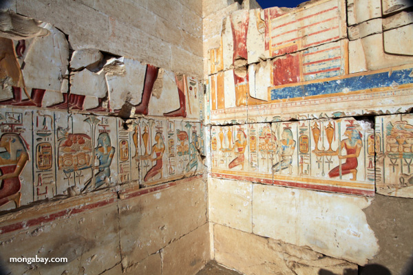 Colorful wall reliefs at the memorial temple of Seti I in Abydos [egypt_0719]