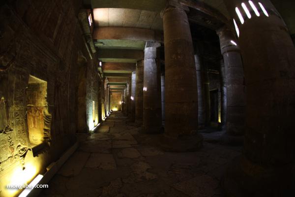 Abydos [egypt_0744]