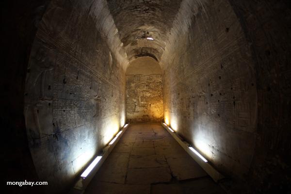 Abydos [egypt_0745]