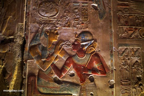 Abydos [egypt_0765]