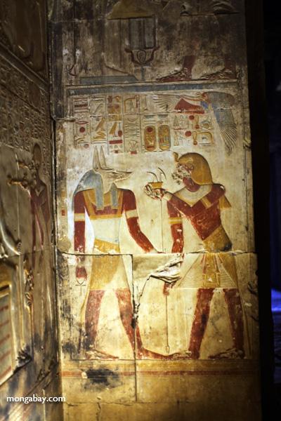 Abydos [egypt_0788]