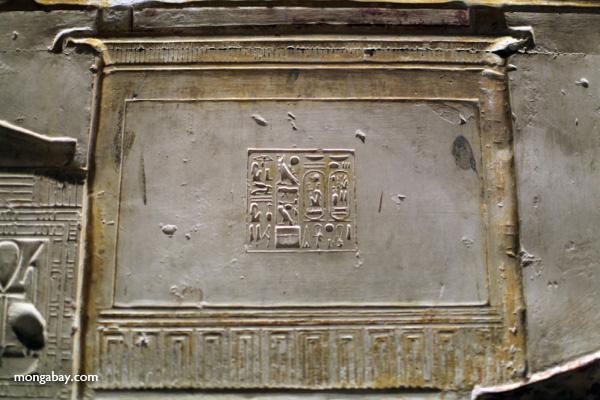 Abydos [egypt_0804]