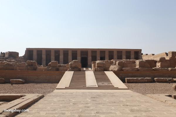 Abydos [egypt_0824]