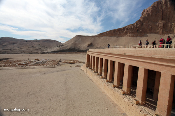 Mortuary Temple of Queen Hatshepsut [egypt_0863]
