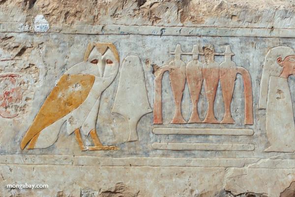 Mortuary Temple of Queen Hatshepsut [egypt_0866]