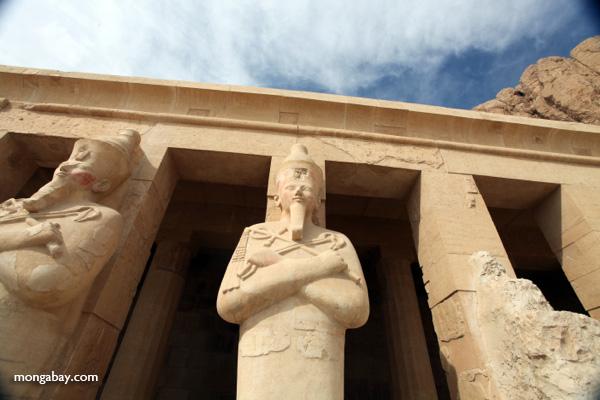 Mortuary Temple of Queen Hatshepsut [egypt_0872]