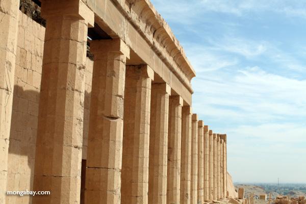Mortuary Temple of Queen Hatshepsut [egypt_0874]