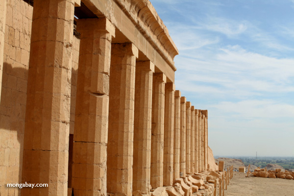 Mortuary Temple of Queen Hatshepsut [egypt_0875]