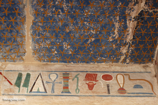 Mortuary Temple of Queen Hatshepsut [egypt_0876]