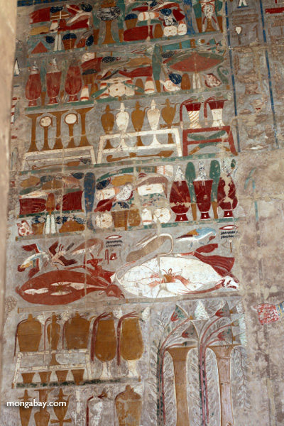 Mortuary Temple of Queen Hatshepsut [egypt_0882]