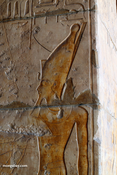 Mortuary Temple of Queen Hatshepsut [egypt_0891]