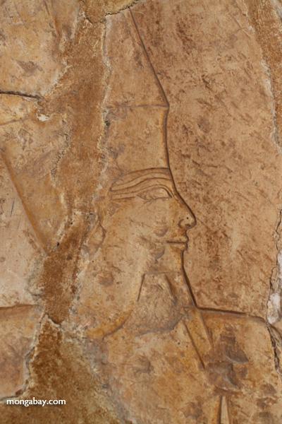 Mortuary Temple of Queen Hatshepsut [egypt_0893]