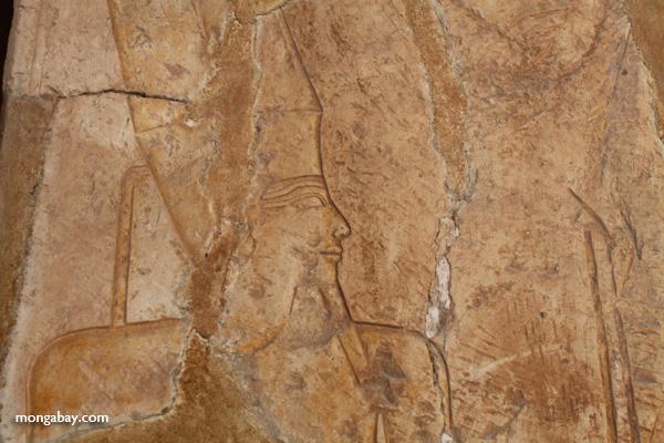 Mortuary Temple of Queen Hatshepsut [egypt_0894]