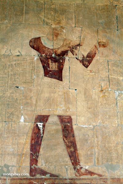 Mortuary Temple of Queen Hatshepsut [egypt_0896]