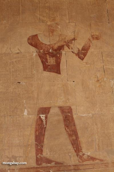 Mortuary Temple of Queen Hatshepsut [egypt_0897]