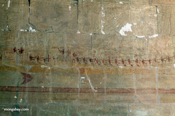 Mortuary Temple of Queen Hatshepsut [egypt_0901]