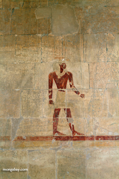 Mortuary Temple of Queen Hatshepsut [egypt_0902]