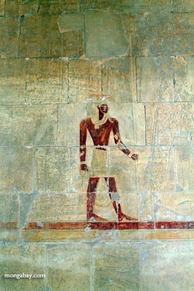 Mortuary Temple of Queen Hatshepsut [egypt_0903]