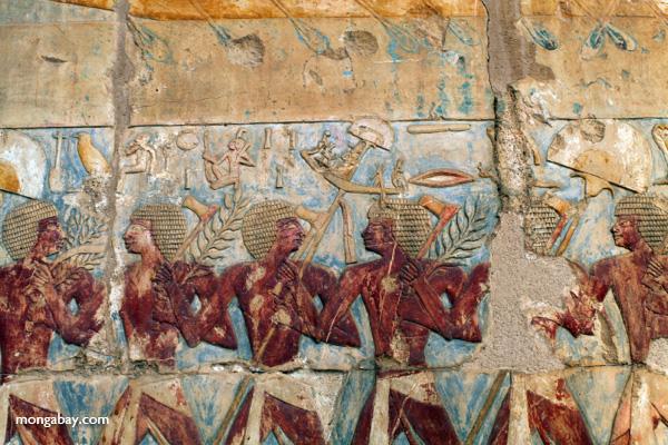 Mortuary Temple of Queen Hatshepsut [egypt_0909]
