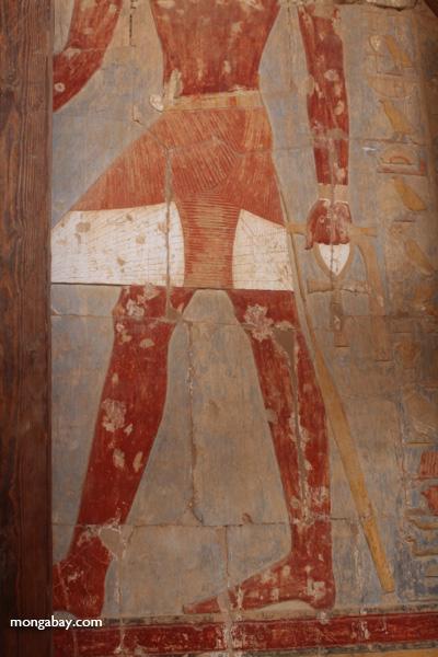 Mortuary Temple of Queen Hatshepsut [egypt_0912]