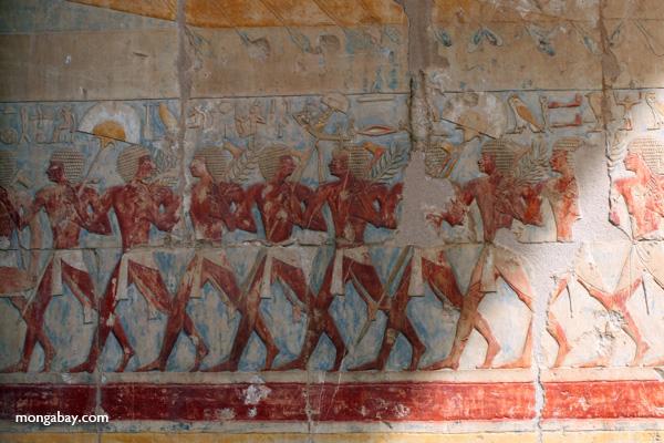 Mortuary Temple of Queen Hatshepsut [egypt_0914]