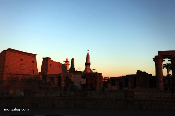 Abu el-Haggag mosque in Luxor Temple within Luxor Temple