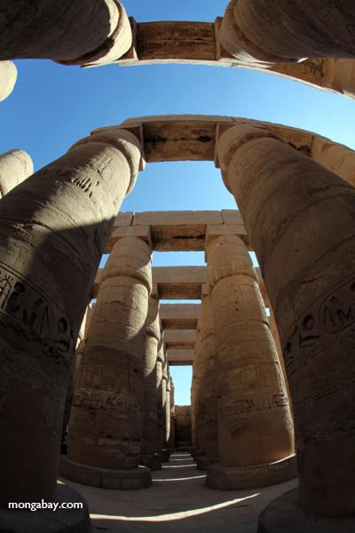 Karnak Temple [egypt_1052]