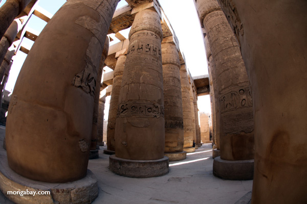 Columns at Karnak Temple [egypt_1111]