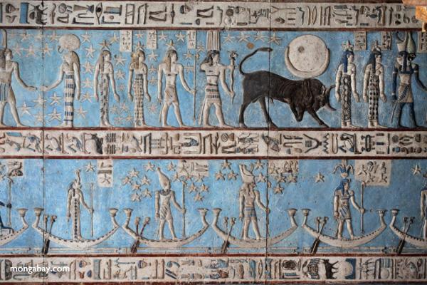 Ceiling art [egypt_1132]