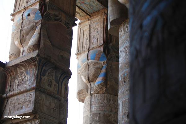 Pharoah art [egypt_1143]