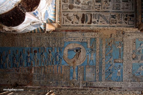 Ceiling art [egypt_1146]