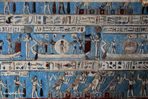 Ceiling art [egypt_1156]