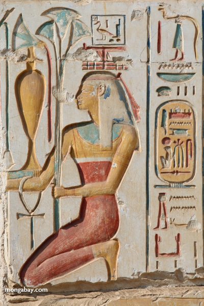 Abydos [egypt_1172]