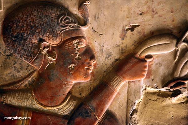 Abydos [egypt_1196]
