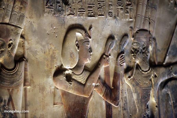 Abydos [egypt_1199]