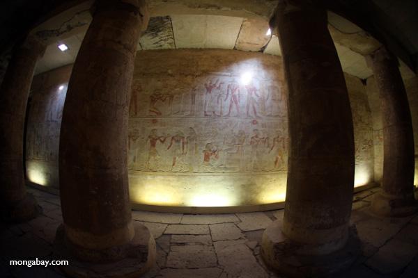 Abydos [egypt_1226]