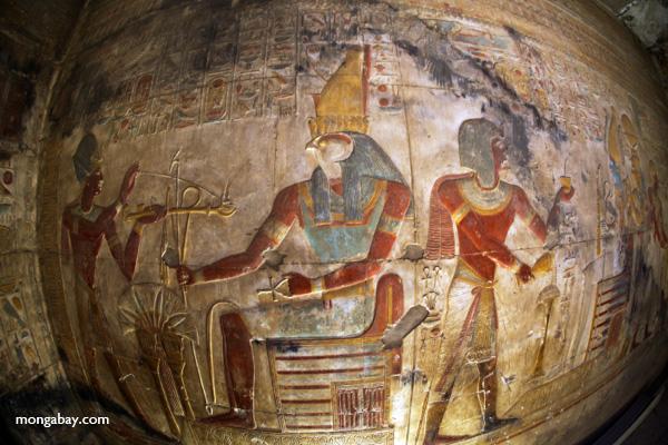 Wall art at Abydos [egypt_1236]