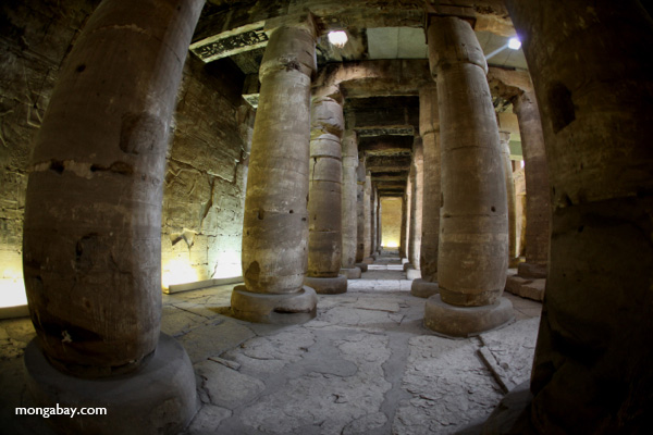 Corridor at Abydos [egypt_1291]