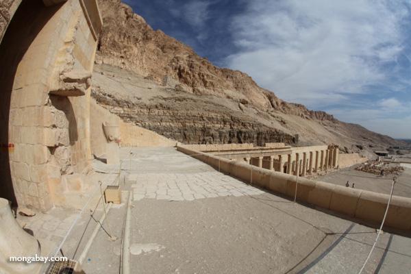 Mortuary Temple of Queen Hatshepsut [egypt_1343]
