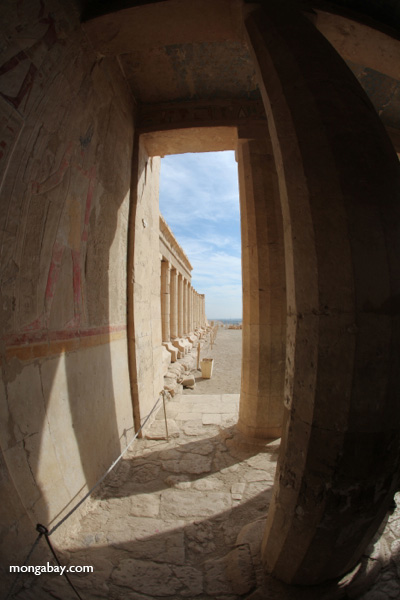 Mortuary Temple of Queen Hatshepsut [egypt_1350]