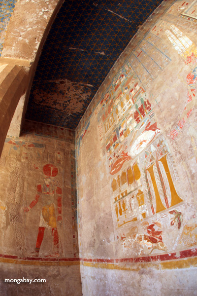 Wall art at the Mortuary Temple of Queen Hatshepsut [egypt_1351]