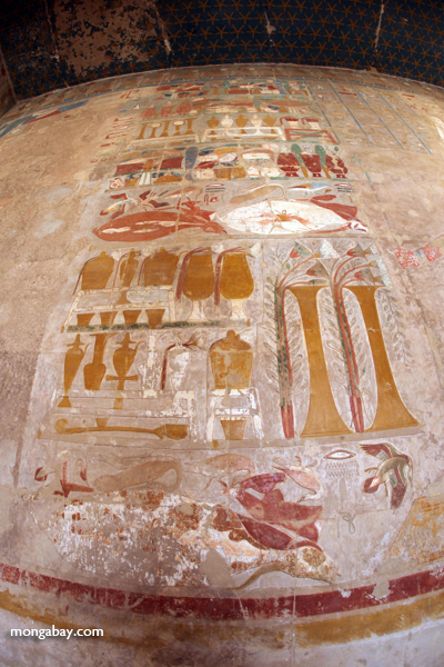 Wall art at the Mortuary Temple of Queen Hatshepsut [egypt_1354]