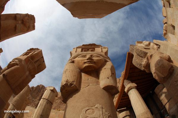 Statue of Queen Hatshepsut