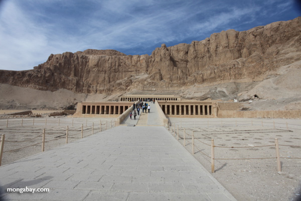 Mortuary Temple of Queen Hatshepsut with Deir el Bahari behind [egypt_1372]