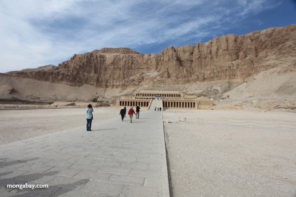 Mortuary Temple of Queen Hatshepsut [egypt_1377]