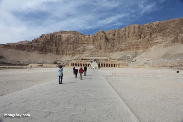 Mortuary Temple of Queen Hatshepsut [egypt_1380]