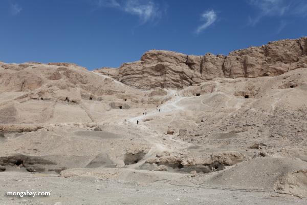 Mortuary Temple of Queen Hatshepsut [egypt_1381]