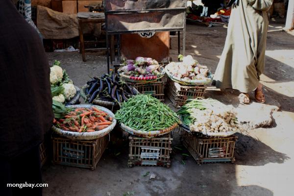 Markets in Esna [egypt_1473]