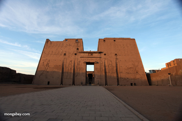 Edfu Temple [egypt_1619]